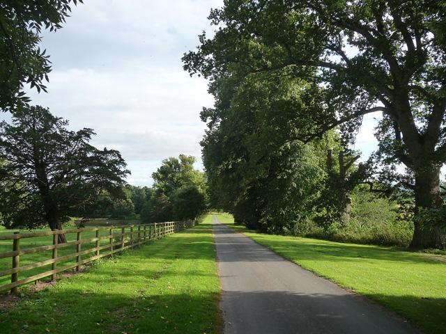 Path near Shobdon