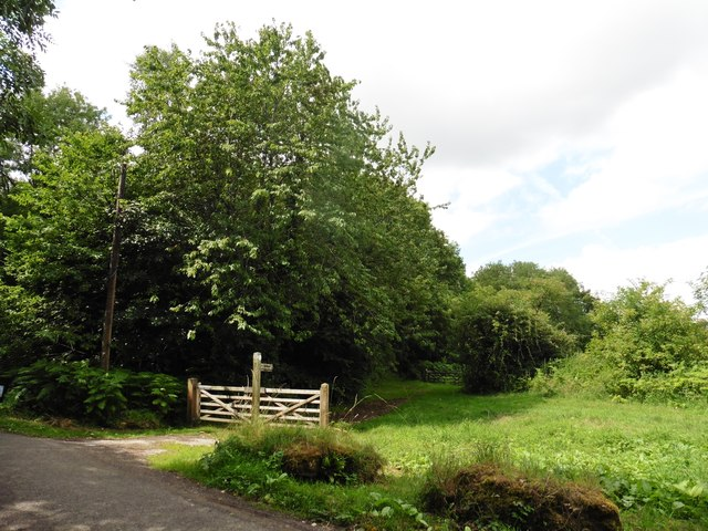 Path to Hamdon Hill