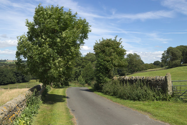 Barse Beck Lane near West Syke Green Farm