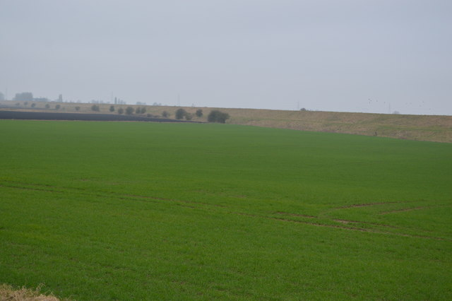 Farmland between New Bedford River and River Great Ouse