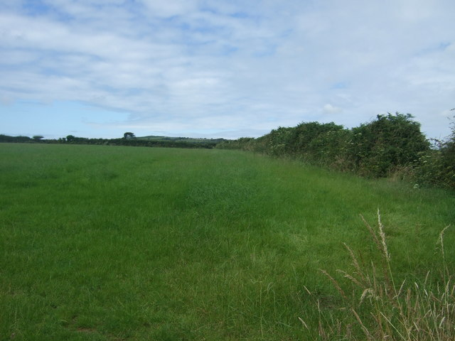 Grazing and hedgerow off the A30