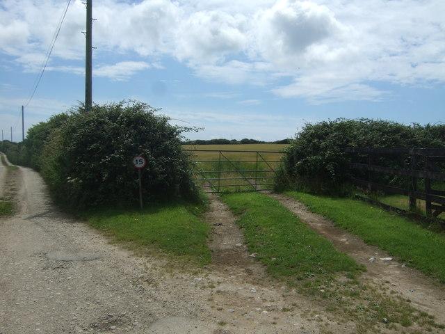 Field entrance near Hendra
