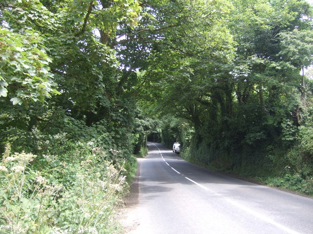 A30 heading north east through woodland