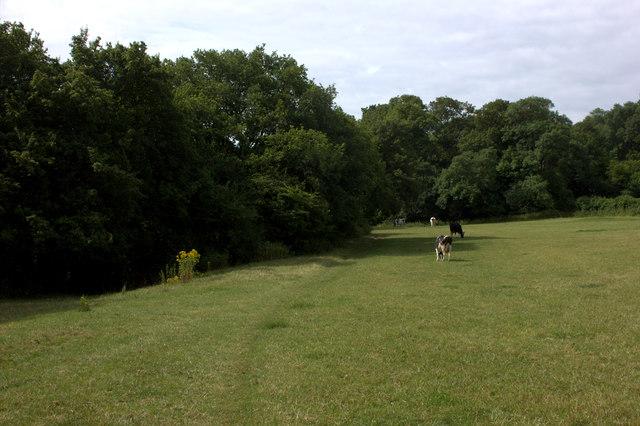 Mole Gap Trail
