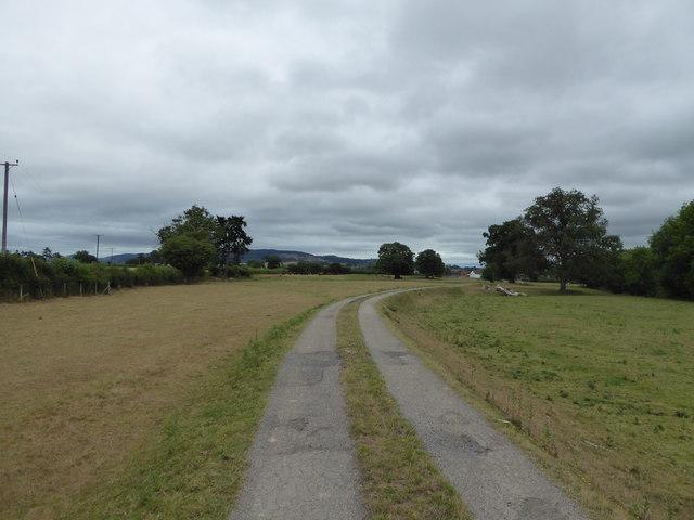 Farm access track approaching Dol-las farm near Berriew