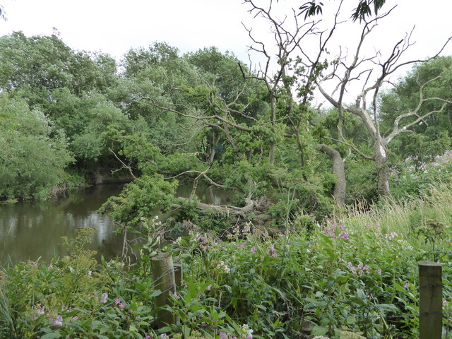 Part of the River Severn's bank