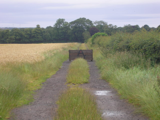 Track to Abercrombie Church and Balcaskie