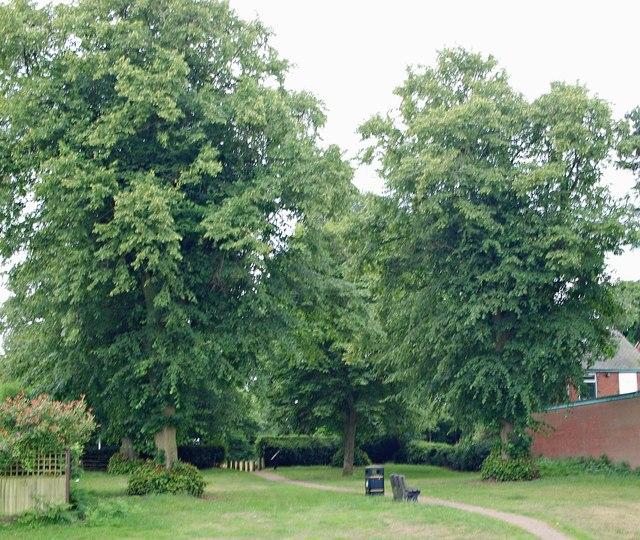Thompson's Grave, Berry Hill Lane, Mansfield, Notts.