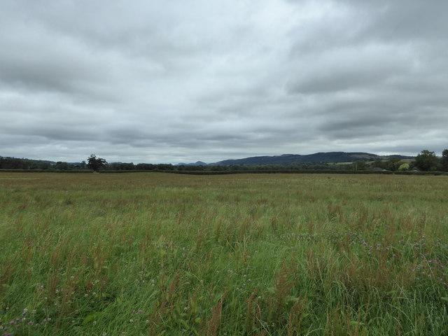 View to the Breidden Hills from Dyffryn Lane burial mound