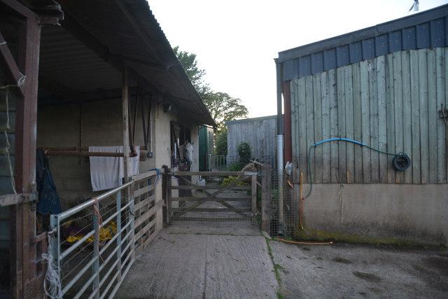 Mid Devon : Lower Thorne