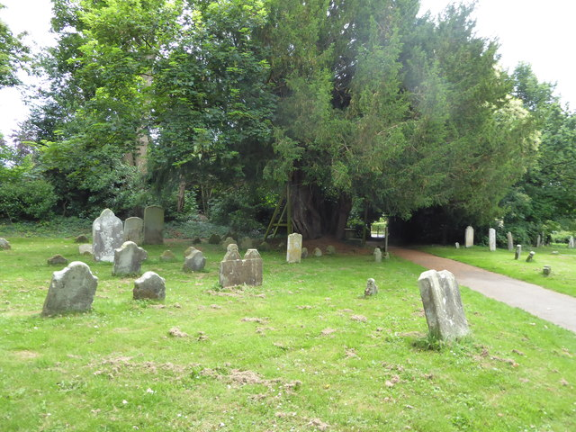 St. Mary, Ninfield: churchyard (c)