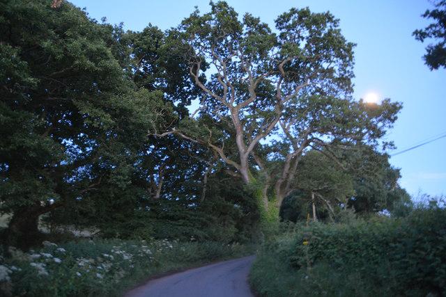 Mid Devon : Water Lane