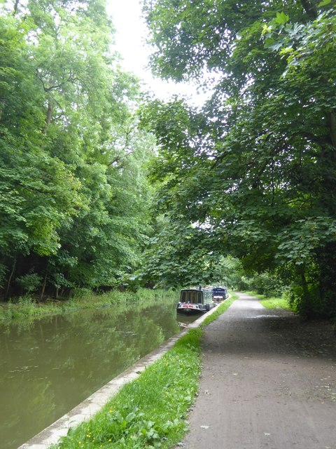 Canal east of Avoncliff