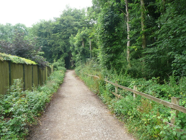 Bridleway to Standish Wood, Randwick