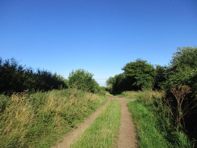 Track to Hockerton Lane