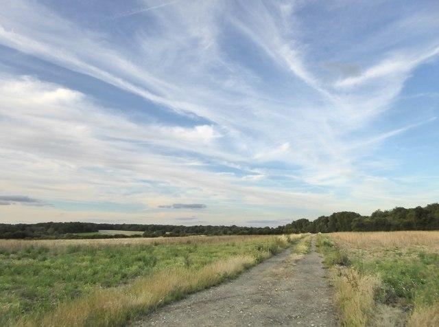 Farmland east of Haw Lane