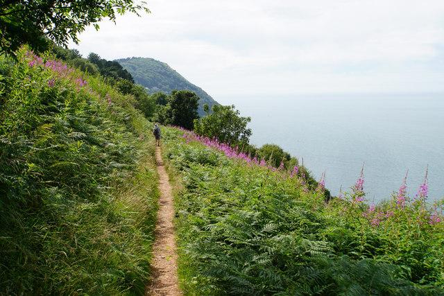 The coastal path on Countisbury Hill