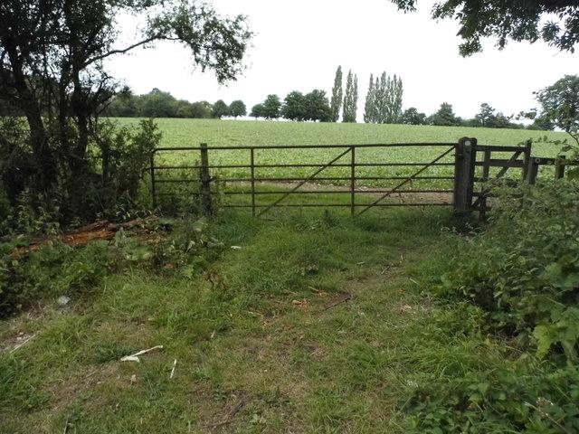 Field entrance in Jockey End