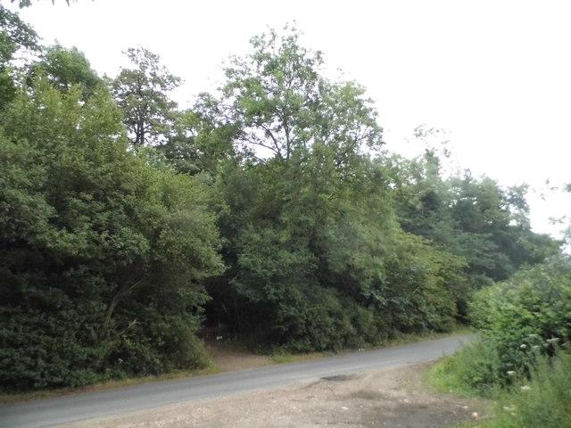 Woodlands in Jockey End