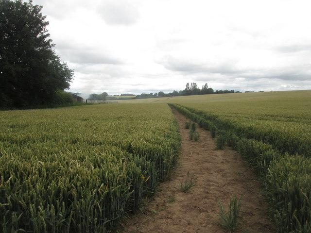 Bridleway towards Shortwood Farm