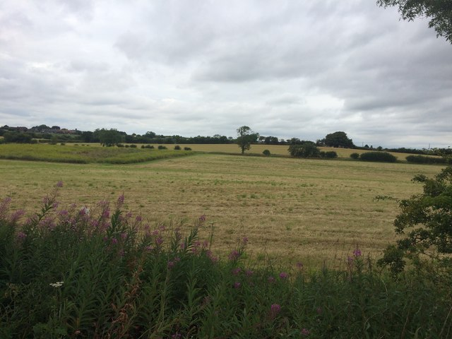Fields to the South of Thurcroft