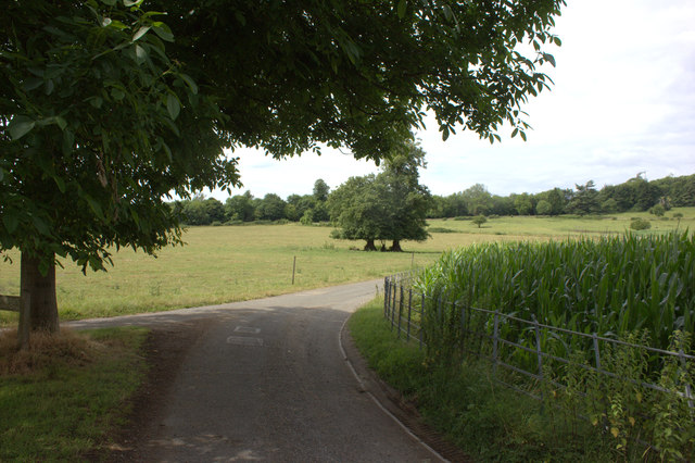 Road junction near Norbury Park Farm