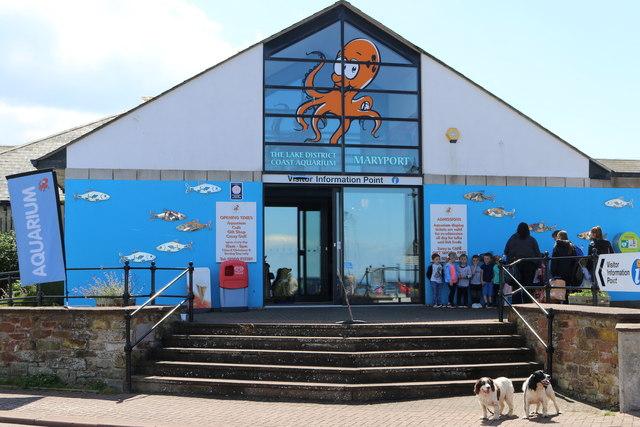 Maryport Aquarium