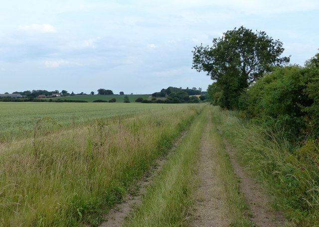 South along the Peddar's Way towards Littleport