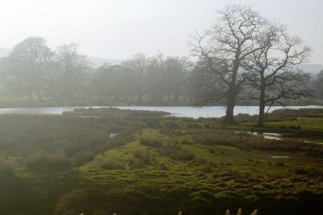 Lake, Powderham Park