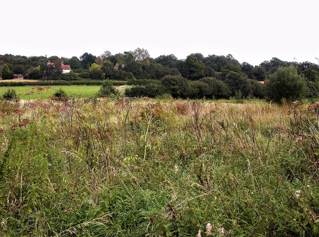Rough Field at Coldharbour, Brede Valley