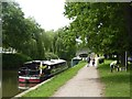 ST7766 : Canal towpath at Bathampton by David Smith