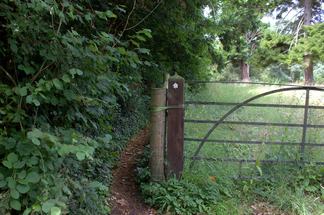 Path from Mickleham to the A24
