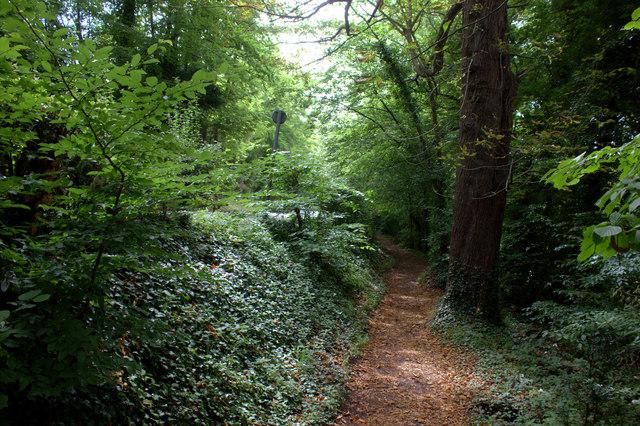 Path alongside B2209, Mickleham