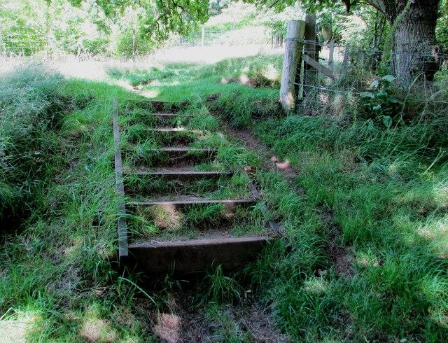 Steps on path to Bishop Hill, Lomond Hills