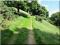 NO1802 : Path to Bishop Hill, Lomond Hills by Bill Kasman
