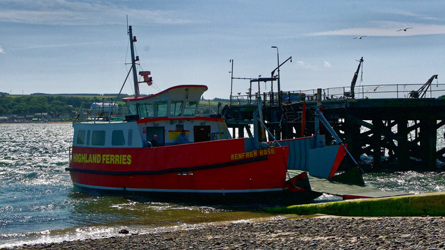 Cromarty/Nigg Ferry Renfrew Rose