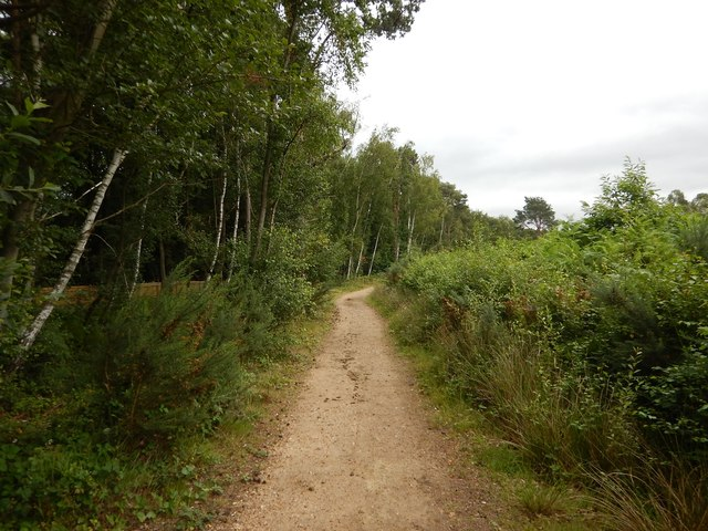 Chobham Common Footpath