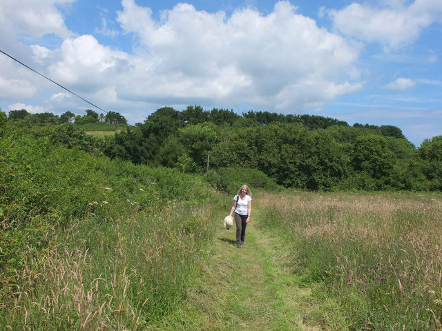 Footpath between Kuggar and Gwendreath Farm