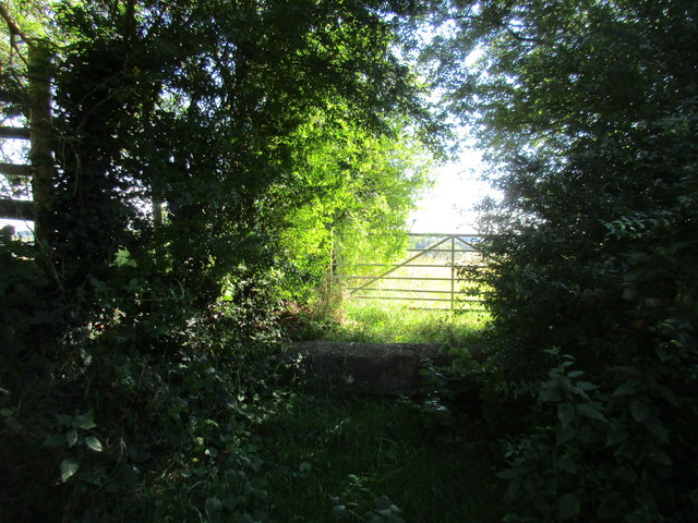 Sunlit gate