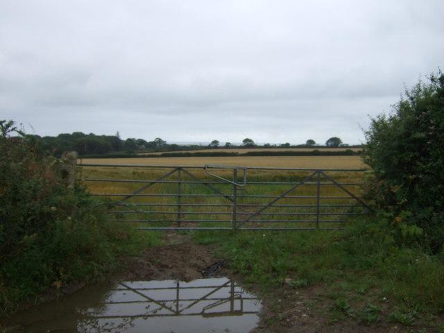 Field entrance off Conker Road