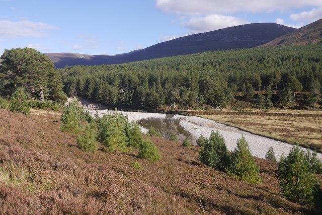 Braiding, River Feshie