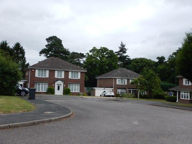 Trumps Green - Detached Houses in Corrie Gardens