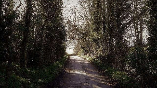 Lane to Cleveley at Radford