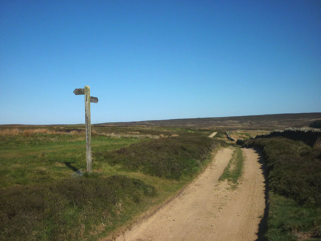 Track junction, Bulbeck Common