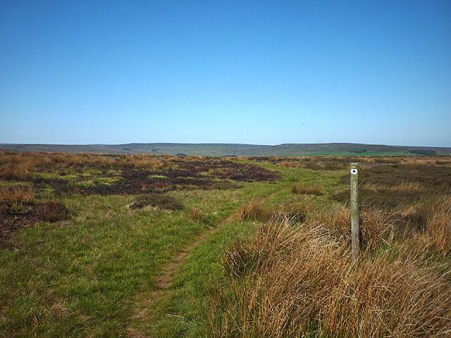 Bridleway on Birkside Fell