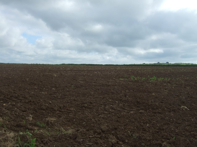 Field off the A3083