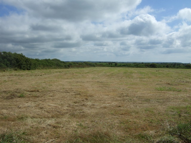 Silage field near Little Trethvas Farm