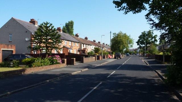 Watchyard Lane