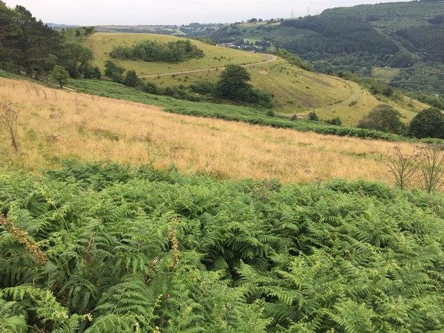 Countryside above Graigwen