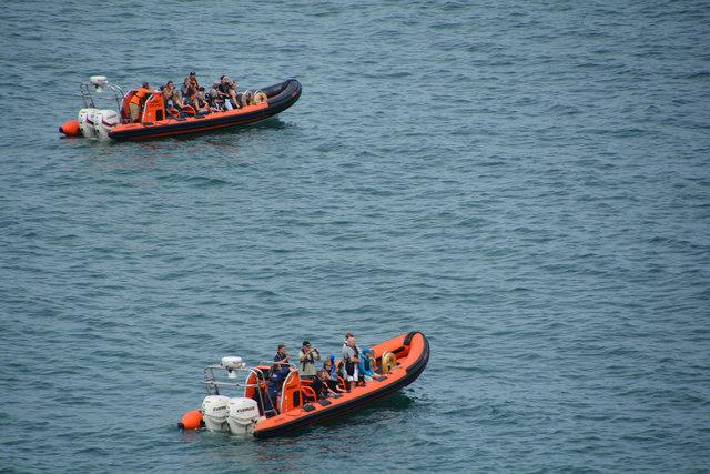North Devon : Sea Safari